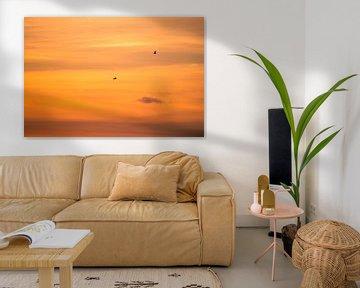 Oranje lucht van Richard Steenvoorden