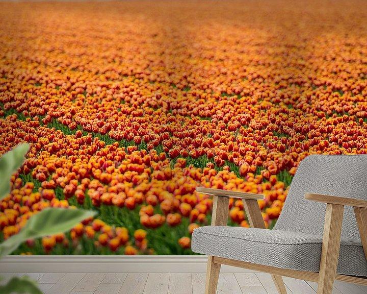 Sfeerimpressie behang: Koninklijke Tulpen van VanEis Fotografie