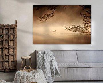 Ente bei Sonnenaufgang van Jana Behr