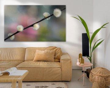 Weidenkätzchen mit glücklichen Frühlingsfarben von Birgitte Bergman