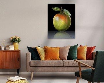 Apfel von Gertrud Scheffler