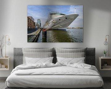 Cruiseschip in de haven van Amsterdam. van Don Fonzarelli