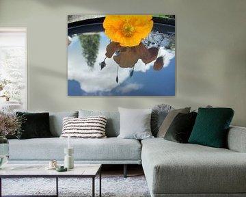bloem weerspiegeld in water van Margriet's fotografie