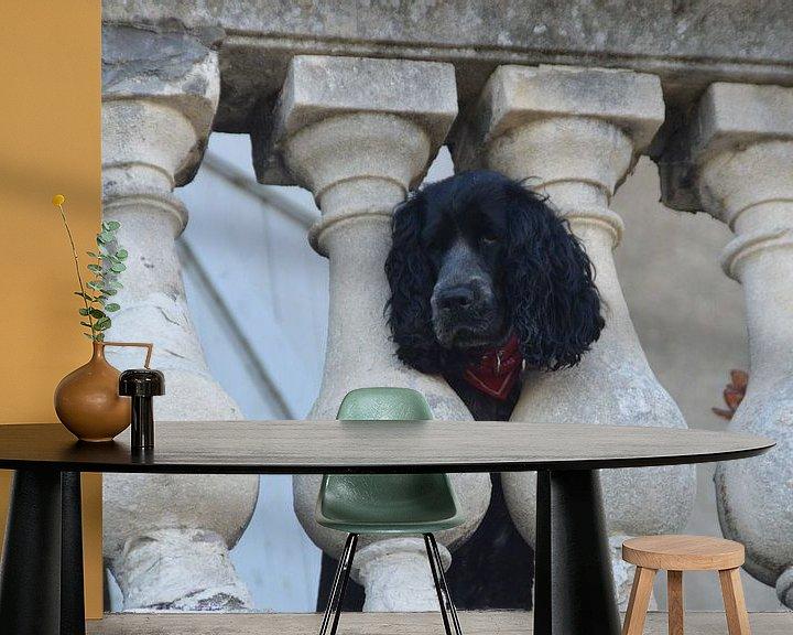 Beispiel fototapete: hond kijkt vanaf balkon naar jou balkon / dog watching from a balcony at you von Margriet's fotografie