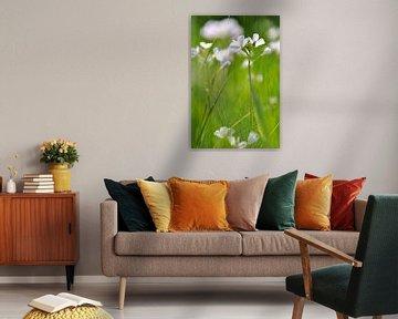dansende bloemen in de lente von Bianca Dekkers-van Uden