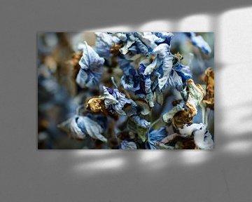 Blue Brown von Andrew Greening