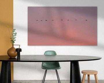 skyline Flamingo's van Marina Nieuwenhuijs