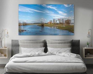 Overstroomde Nederlandse polder van Ruud Morijn