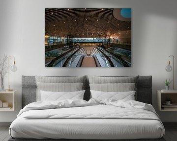 De kaart op het plafond van treinstation Delft van Michael Echteld