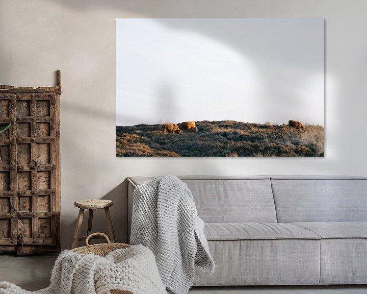 Sfeerimpressie: Schotse Hooglanders  van Rob Veldman
