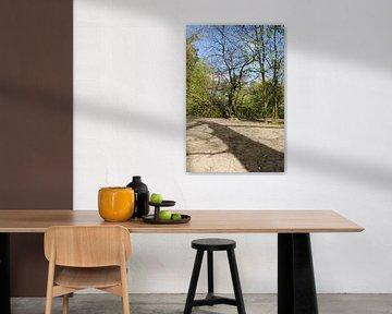 The Woods van Lyn Van Veldhoven