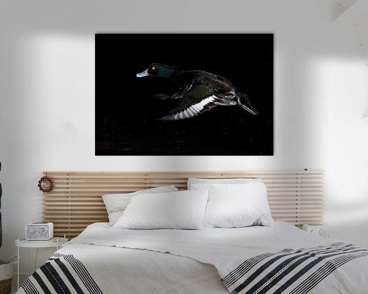Beispiel: vliegende kuifeend von Gejo Wassink