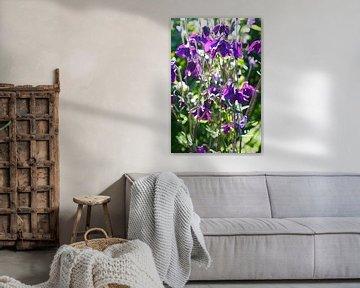 Welt der Blumen von Gabriella David