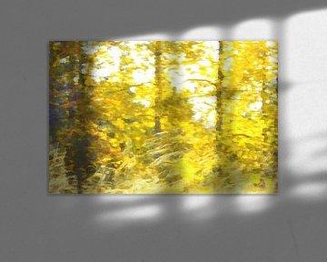 Inspired by Van Gogh sur Susan Hol