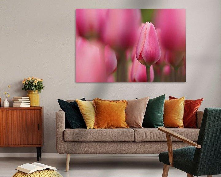 Beispiel: Roze tulpenveld von Astrid Brouwers