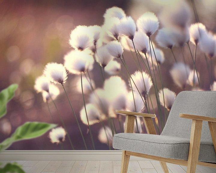Impression: Paardenbloemen - Dandelions -  Pusteblumen sur Julia Delgado