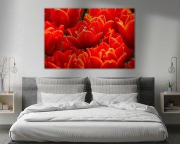 Fel rode tulpen von Nannie van der Wal