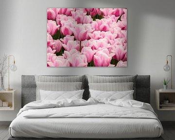 Groep roze tulpen von Nannie van der Wal