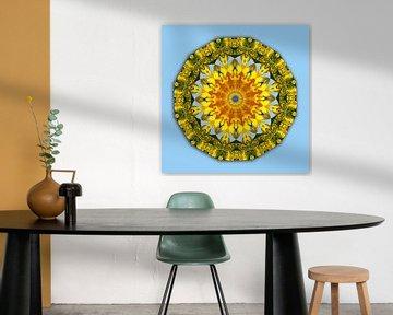 Mandala van zonnebloemen, bloemenmandala, natuur van RaSch-BS_Design
