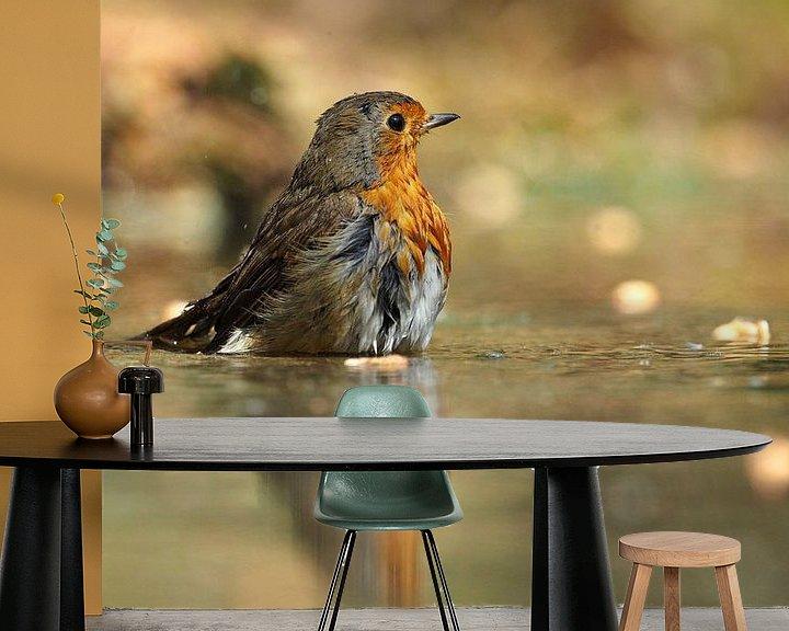 Beispiel fototapete: Roodborst met zijn spiegelbeeld von Astrid Brouwers