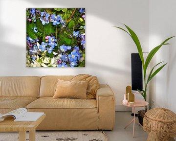 Wasserblüten von Christine Nöhmeier