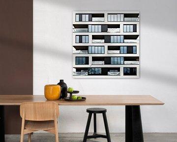 Living in a box van Maerten Prins