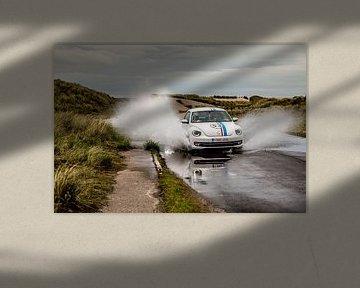 Herbie Splash! van Sonia Alhambra Mosquera