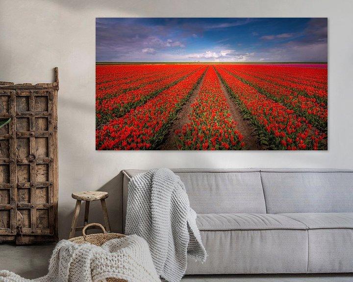 Sfeerimpressie: Tulpenveld van Patrick Rodink