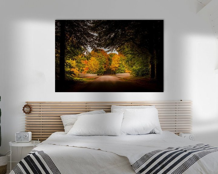 Sfeerimpressie: Herfst op de Veluwe van Patrick Rodink