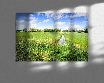 Nederlandse polder in het voorjaar van Ruud Morijn