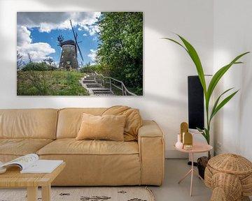 Windmühle in Benz auf der Insel Usedom von Rico Ködder