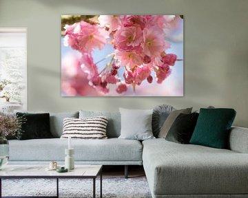 Roze lente bloesem van de appelboom van Nicole Nagtegaal
