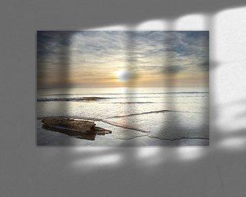 Wrakhout jutten tijdens zonsondergang op het strand van Julianadorp (1) van Gerben van Dijk