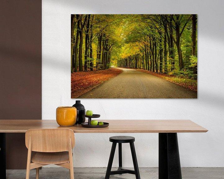 Sfeerimpressie: Veluwe op zijn herfst van Patrick Rodink