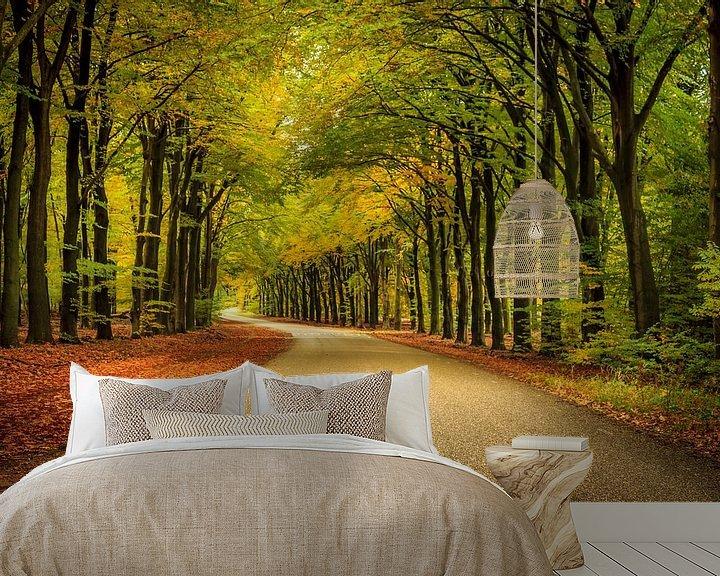 Sfeerimpressie behang: Veluwe op zijn herfst van Patrick Rodink