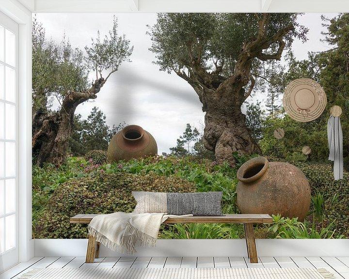 Impression: Olivenbäume und alte Vasen auf Madeira sur ChrisWillemsen
