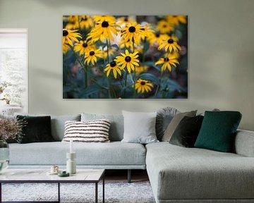 Gele bloemen van Ron Pool