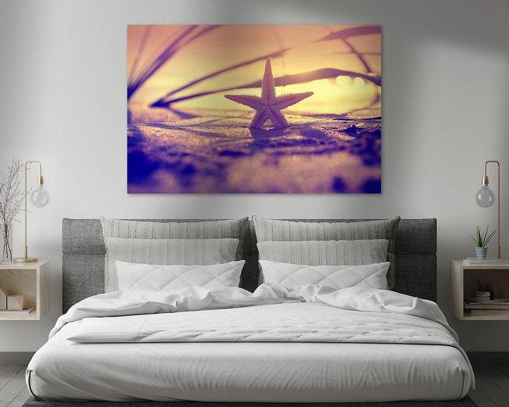 Beispiel: Seestern im Sonnenuntergang  von Tanja Riedel
