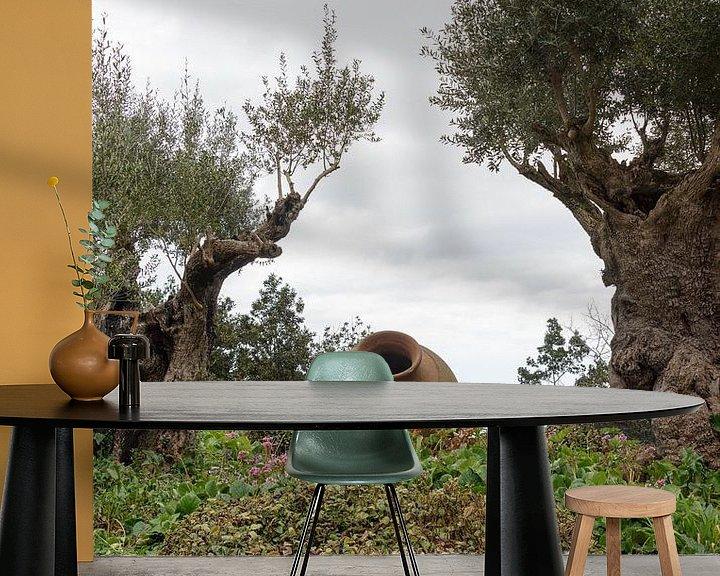 Impression: olive trees and old vases in garden sur ChrisWillemsen