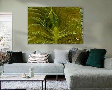 leaf van Wijbe Visser