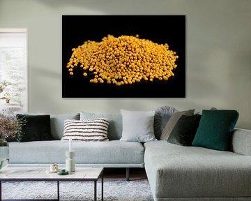 Mosterdzaad op een zwarte achtergrond van Sjoerd van der Wal