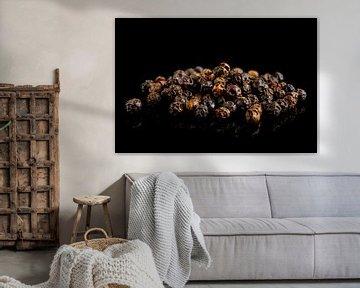 Schwarze Pfefferkörner auf einem schwarzen Hintergrund  von Sjoerd van der Wal
