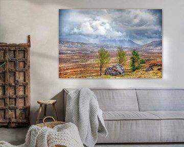 Rannoch Moor, Highlands (Schotland)
