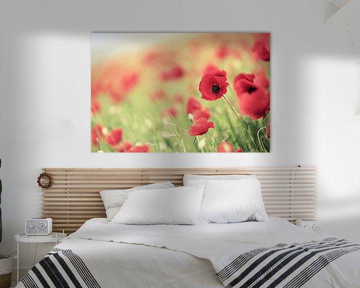 Sfeerimpressie: poppies ... van Els Fonteine