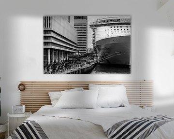 Harmony of the Seas | Rotterdam | 2016 von Shui Fan