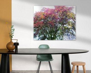 Tree Magic 132 van MoArt (Maurice Heuts)