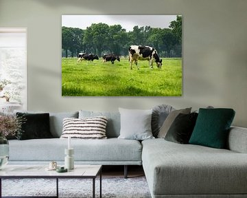En natuurlijk zijn er koeien! von Cilia Brandts