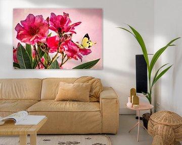 Rosa Rose mit gelber Schmetterling im Frühjahr von Rietje Bulthuis
