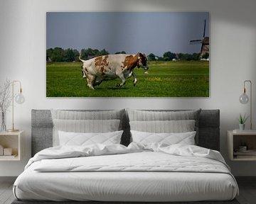 Springende koe van PJG Design