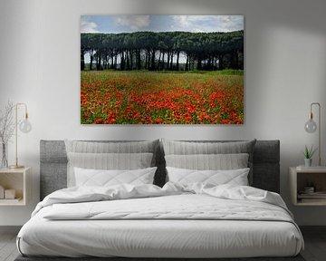 Beautiful Tuscany van Joachim G. Pinkawa